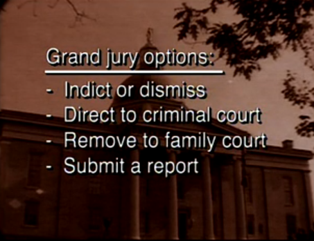 Visual Law Library - Grand Jury Instructions 4