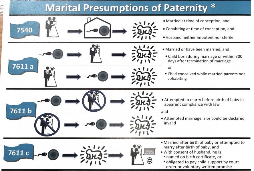 Marital Presumptions of Paternity chart